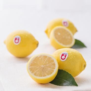 必威登录首页柠檬